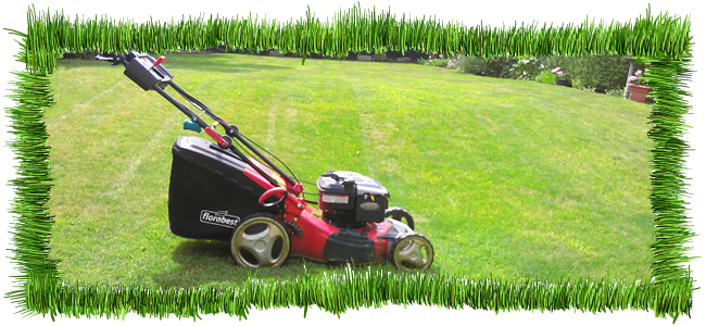 lawn cutting weston super mare